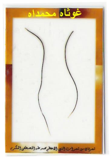 الشعرة الشريفة