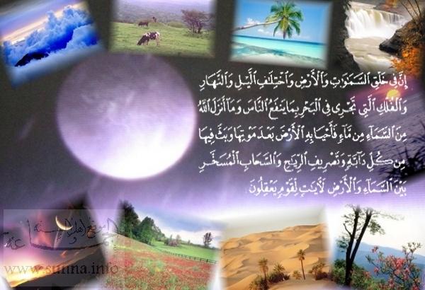 تعالو نسجل الحضور اليومي بكلمة في حب الله عز  وجل - صفحة 2 Picture0_11