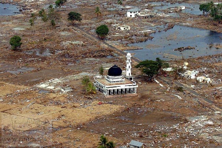 tsunami111