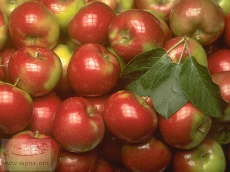 تفاح تفاحة
